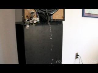 Вода и низкочастотный звук